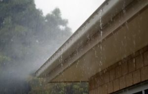 SeeForth Cleaning Services - Gutter Clearing